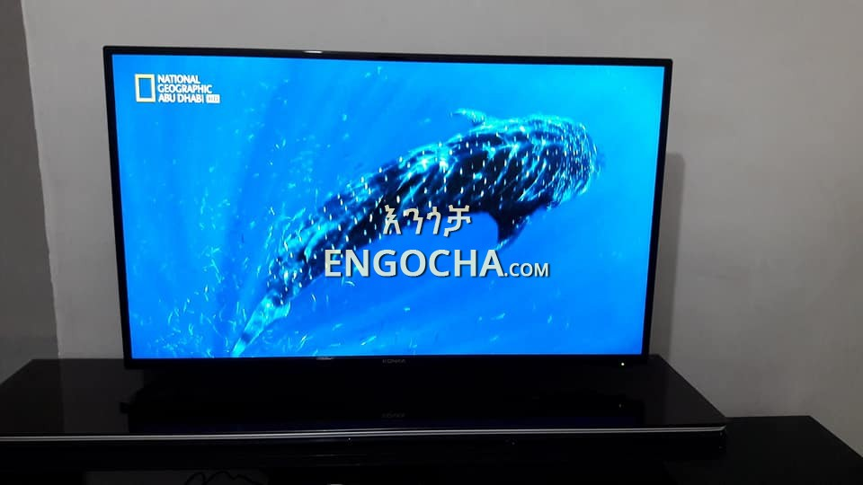 Share KONKA 43 inch TV for sale \u0026 price in Ethiopia - Engocha.com | Buy